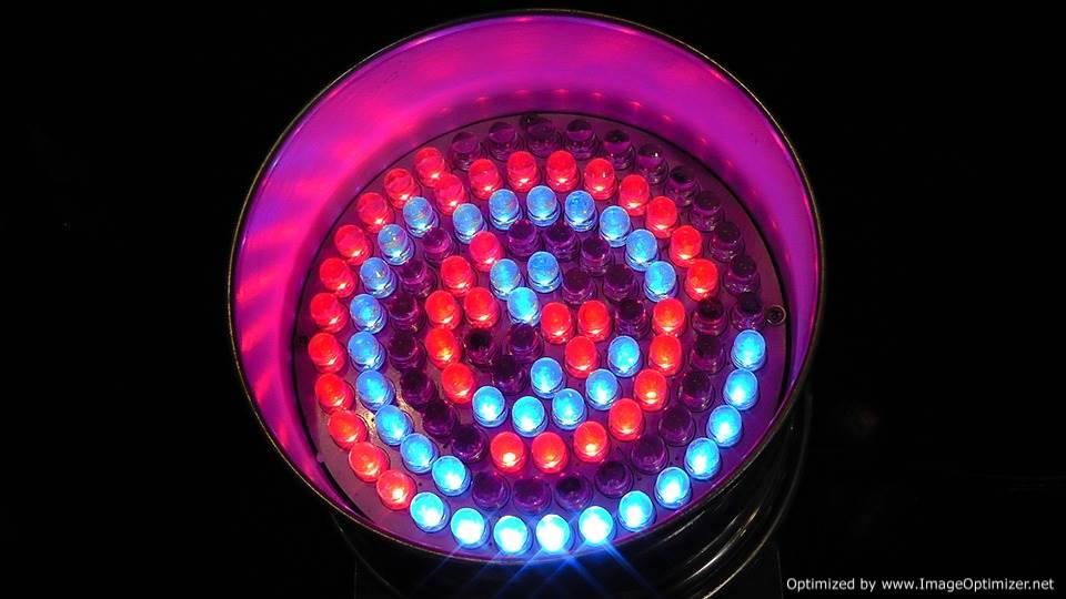 light-emitting-diodes-108431_960_720